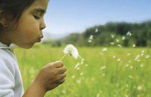 malé dieťa skvetinou vpoli